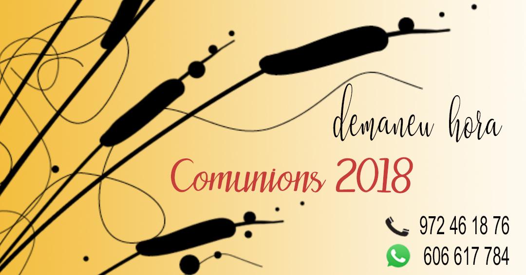 cartell explicatiu de les comunions 2018